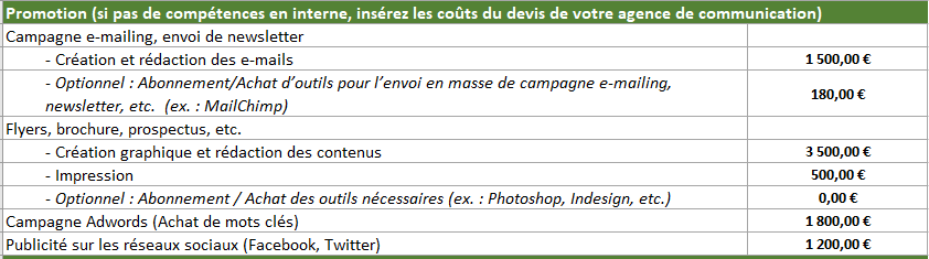 promotion-projet-application-mobile-budget-cout