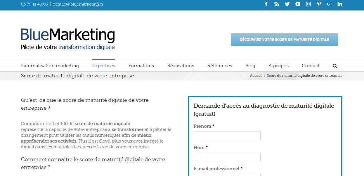 blue-marketing-diagnostic-transformation-numerique-entreprise