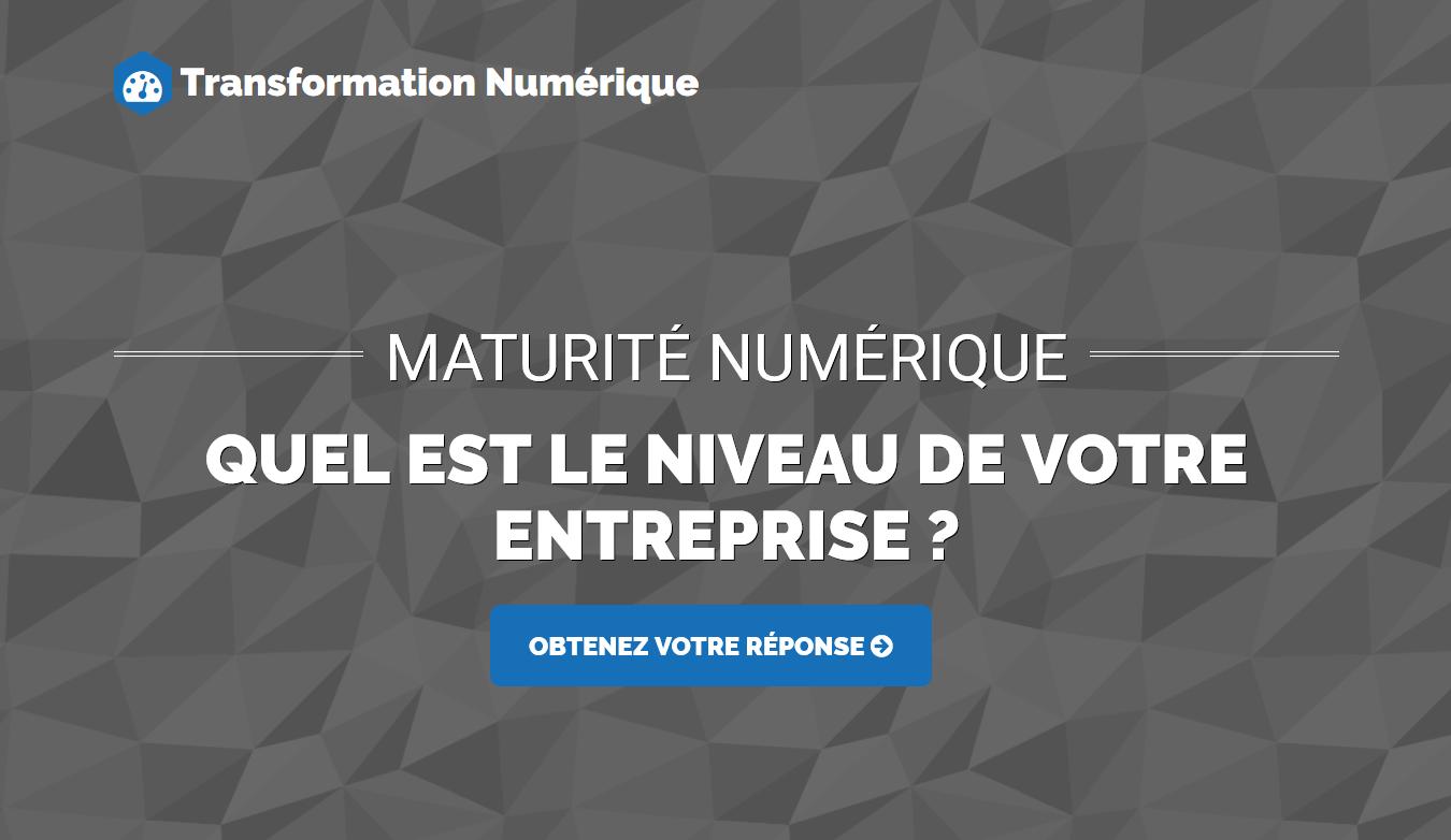 transformation-numerique-maturite-niveau-entreprise