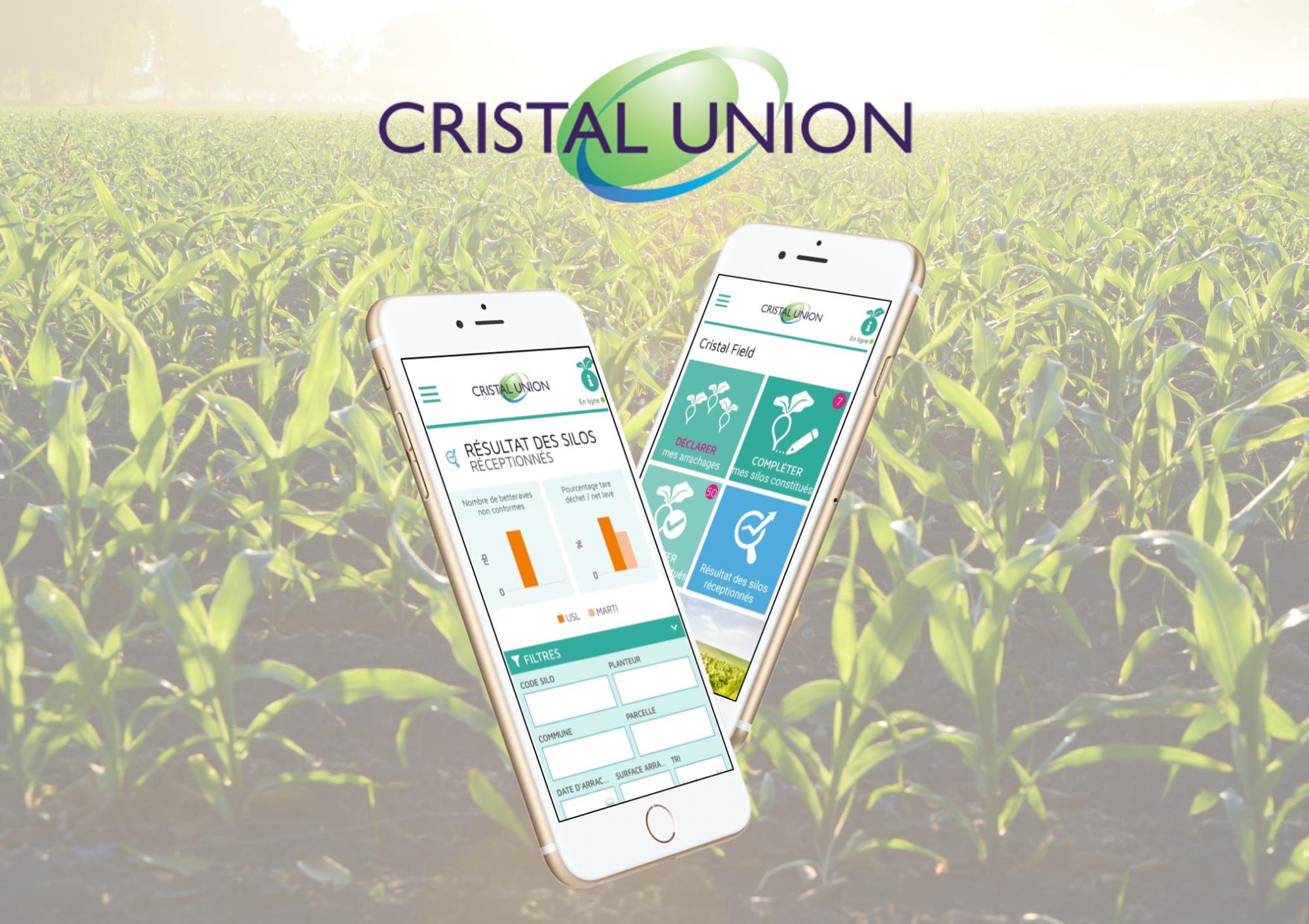 Cristal Field App Cas d'étude